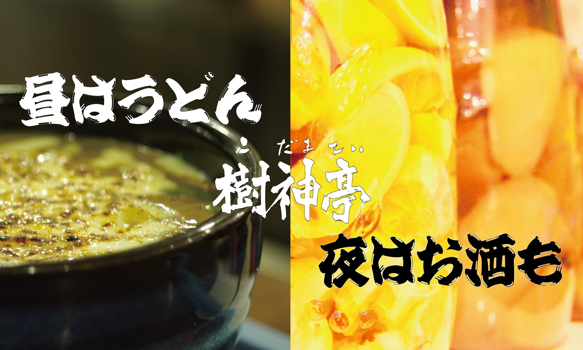 愛知県安城市のカレーうどんがおいしくお酒も飲めるお店、樹神亭